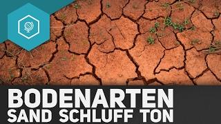 Bodenarten: Was sind Sand, Schluff und Ton – Böden