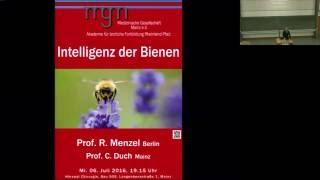 Intelligenz der Bienen – Vortrag