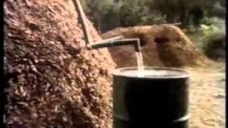 Biomeiler – Heizung & Warmwasser eine alternative Energie