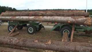 Holzstämme verladen anno dazumal mit Hans Bächli