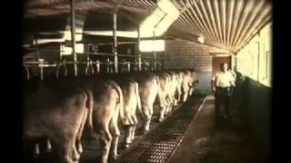 Landwirtschaft einst und heute (1970)