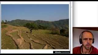 Pflanzenkohle für eine biobasierte Wirtschaft