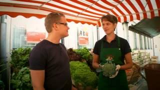 Gemüsevermarktung im Knoblauchsland
